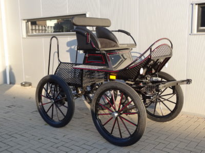 Trainingswagen enkelspan paard veluw putten nieuw